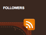 RSS Feed button